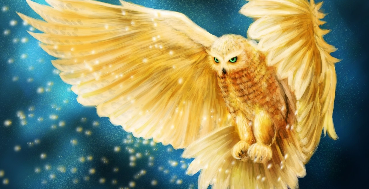 On the Trail of the Golden Owl